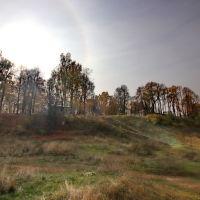 Осеннее гало над городским парком., Шуя