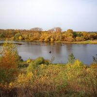 Над рекой. Осенний рыбак., Шуя