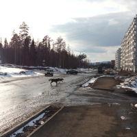 ул. Федотова, Усть-Илимск