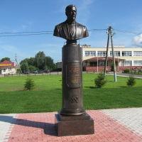 Фото #523170, Сонково