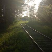 Подъездные пути к Троицкой фабрике, Кондрово