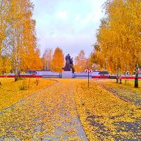 осень в городском саде, Топки