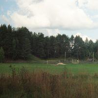 Парфеньево  (90е гг)  СТАДИОН, Парфентьево