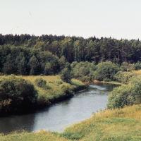 река НЕЯ  дер Коняево Парфеньевский р-н (конец 90х), Парфентьево
