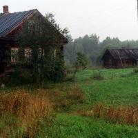 """Утро туманное"" д. Коняево., Парфентьево"