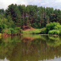 река  НЕЯ    около дер. ФРОЛОВО   Парфеньевский р-н, Парфентьево