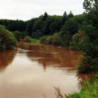 Вода прибыла после дождя.    (река  НЕЯ), Парфентьево