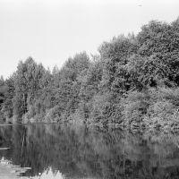 река НЕЯ  (середина 70х гг), Парфентьево