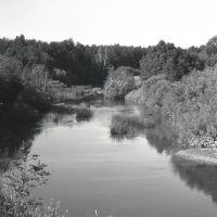 река  НЕЯ  дер. Коняево. Парфеньевский р-н. (середина 70х. гг), Парфентьево