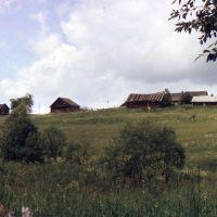 Окраина деревни МИХАЛЕВО.  (90е  гг), Парфентьево