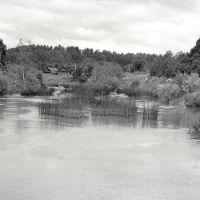 река НЕЯ. дер КОНЯЕВО.  (середина 70х.гг), Парфентьево