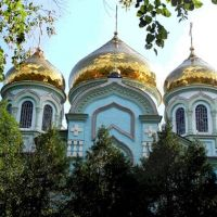 Фото #523906, Курганинск
