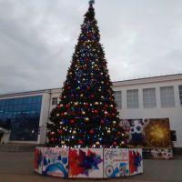 Ёлка 2019-2020, Кореновск