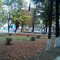 Сквер, Кореновск