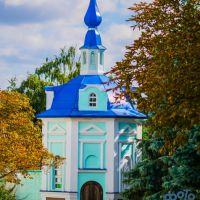Сергиево-Казанский кафедральный собор., Курск