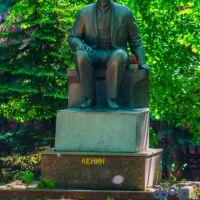 Владимир Ильич Ленин, Курск