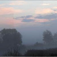 Туман над Байгорой, Грязи