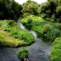 Река Десна., Апрелевка