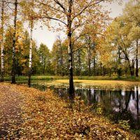 Осень в парке Майданово., Клин