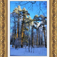 Зимний парк в Майданово., Клин