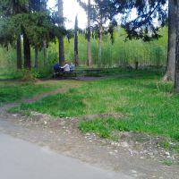 место сходки бабулек, Ликино-Дулево