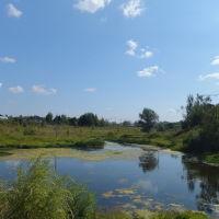 Река Грязева . 1972 год.2014 год., Нахабино