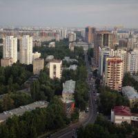улица Ленина, Реутов