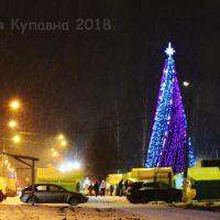 Старая Купавна 2018, Старая Купавна