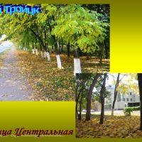 Улица Центральная, Троицк