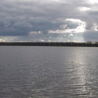 Фото #525071, Туголесский Бор