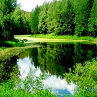 Лесная речка, Хотьково