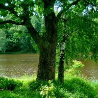 Река Воря, Хотьково