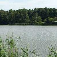 Озеро, Электрогорск