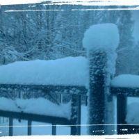 зима 2015, Кандалакша