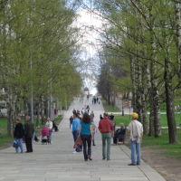 Пешеходная улица, Новгород