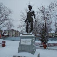 Памятник.Миклухо-Маклай, Окуловка
