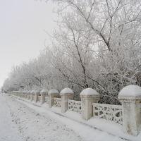 Зима. ул. Майская, Адамовка