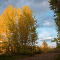 Осень золотая   р.Сакмара  г.Кувандык, Кувандык