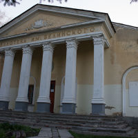 Библиотека Белинского, Белинский
