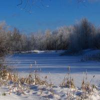 Городской пруд, зимой., Кизел