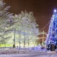 Кочево. Новогодняя ель у здания администрации Кочёвского района. Фото Д. Пыстогова, Кочево