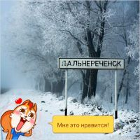 дальнереченск, Дальнереченск