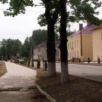 ул. Ленина (от Площади Знамени Победы к вокзалу), Идрица