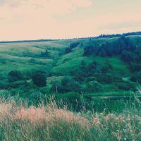 Вид с холма, Пронск