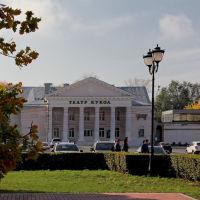 Кукольный театр, Тольятти