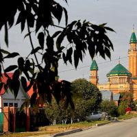 Соборная мечеть, Тольятти
