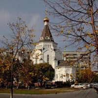 Храм Александра Невского, Тольятти