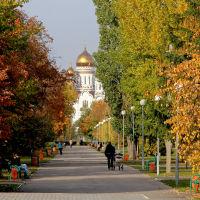Парк Победы, Тольятти