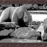 Медведь в фонтане, Выборг