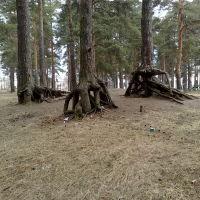 шагающий лес возле дома культуры, Приозерск